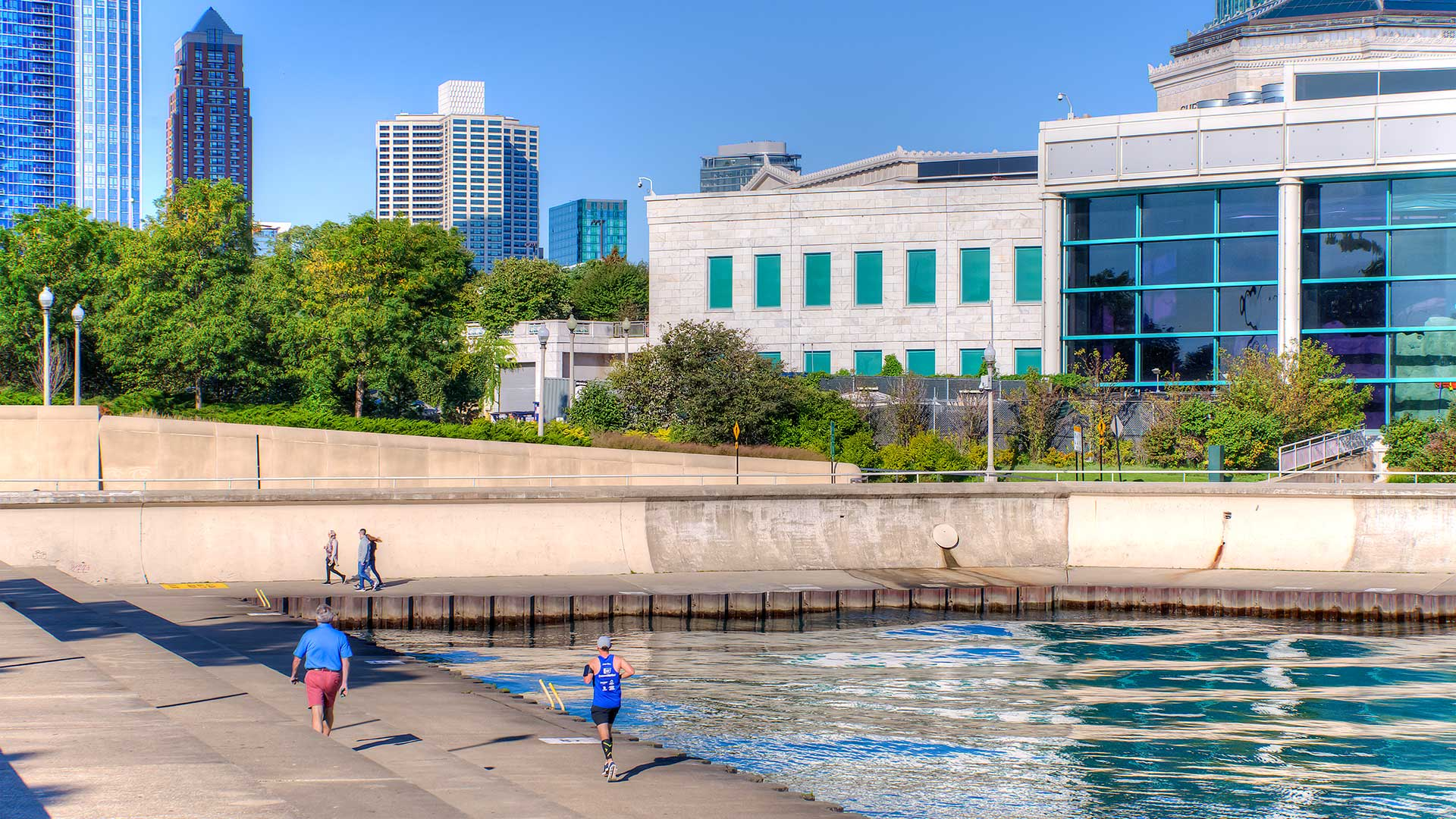 The Shedd Aquarium along the Lake Michigan shoreline. Trees and the Eleven Thirty apartment tower are seen in the background.